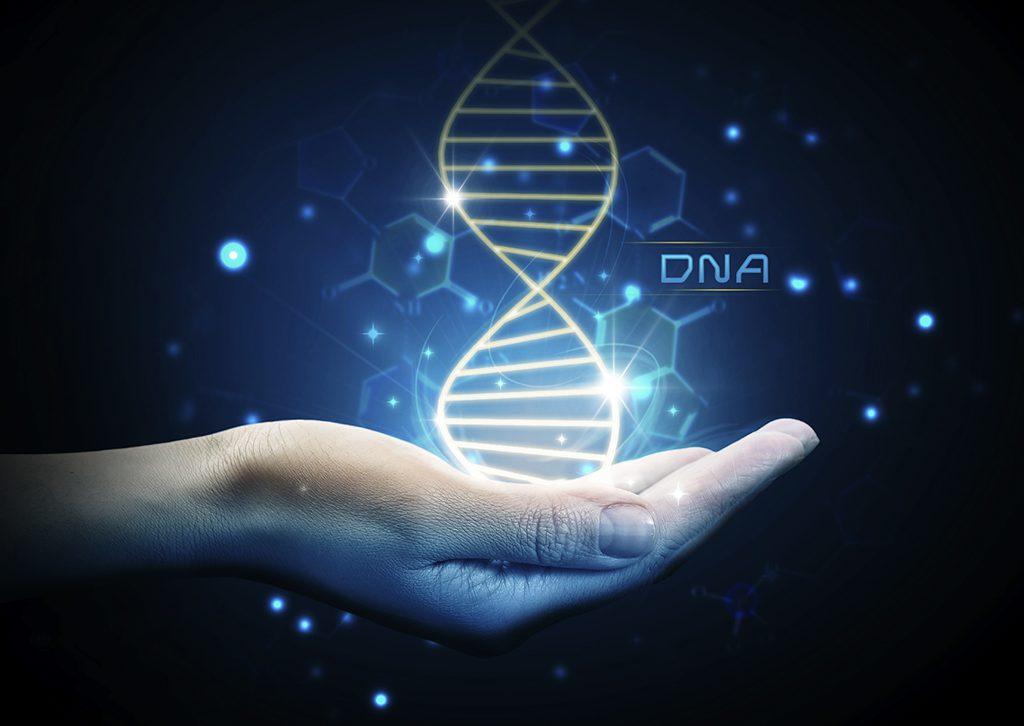 DNA-story-main