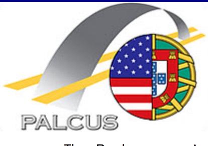 palcustttt